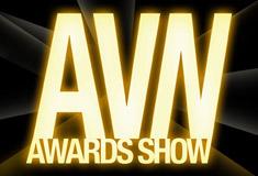 2007_avn_award_logo